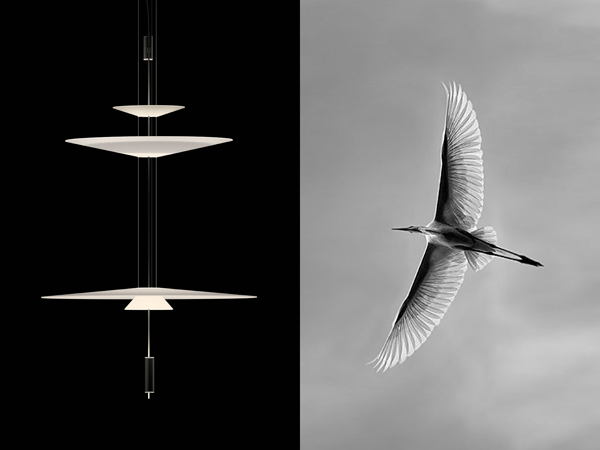Vibia - Design Concept Delicately - Flying shapes